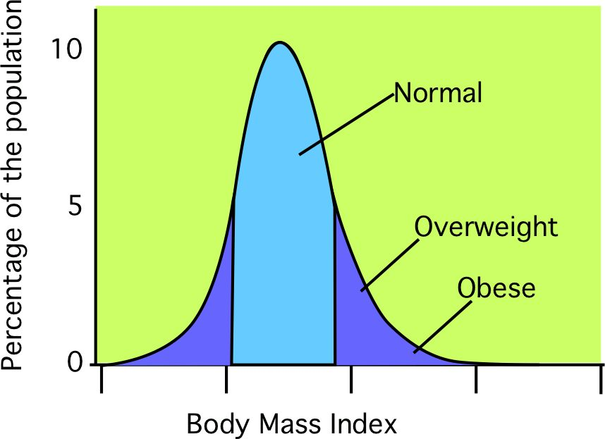 What is average bmi