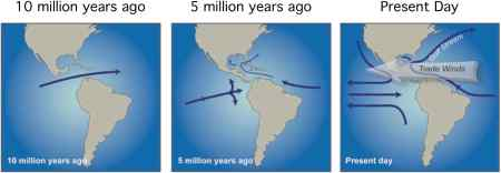 The closure of the Central American Seaway around 5 million years ago is thought have gradually affected circulation between the Atlantic and Pacific Oceans